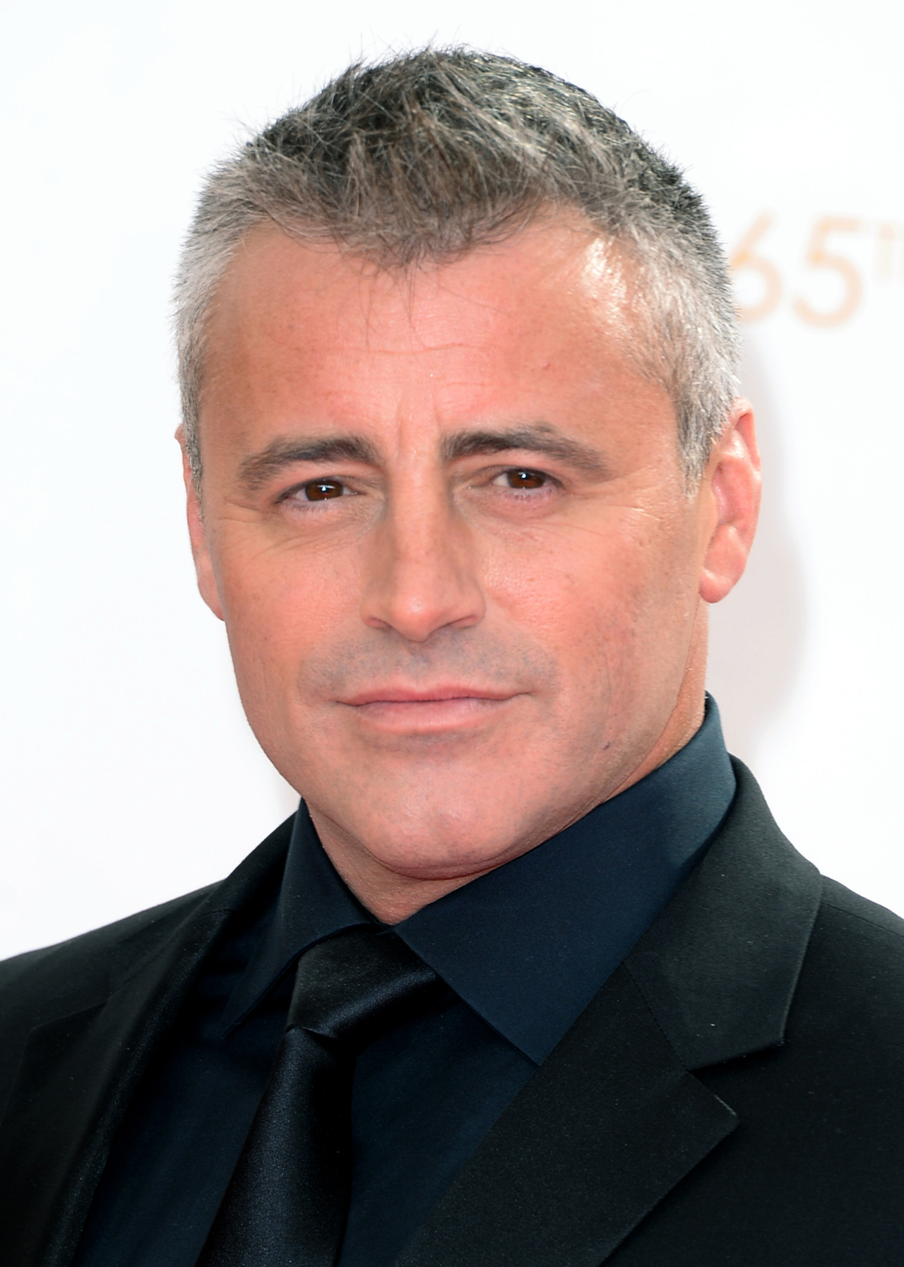 Matt LeBlanc regresa con un plan